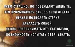 цитаты о счастье, цитаты о жизни и любви, страшно