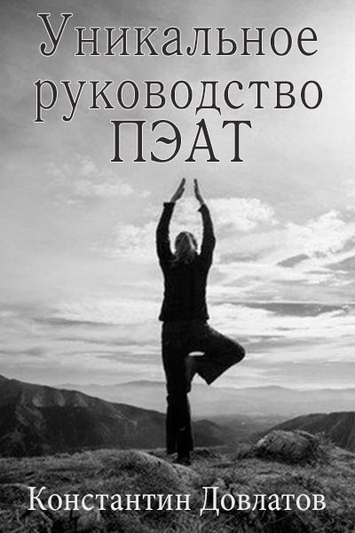 ПЭАТ руководство, Константин Довлатов