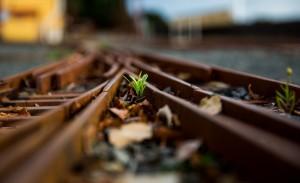 Как жить дальше? Истерика, что делать? Блог о психологии Sumasoyti.com