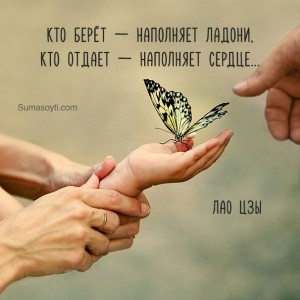 sumasoyti_citata_serdtse