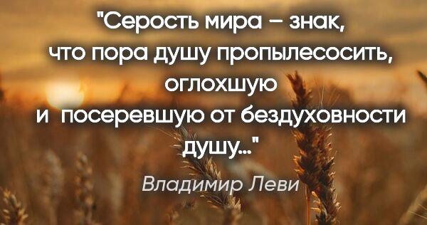 цитата Владимир Леви